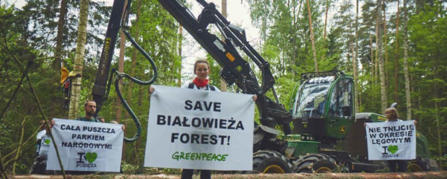 puszcza-blokada2-gb-1024x683 Photo courtesy of Grzegorz Broniatowski, Greenpeace Polska, CC BY-ND 2.0