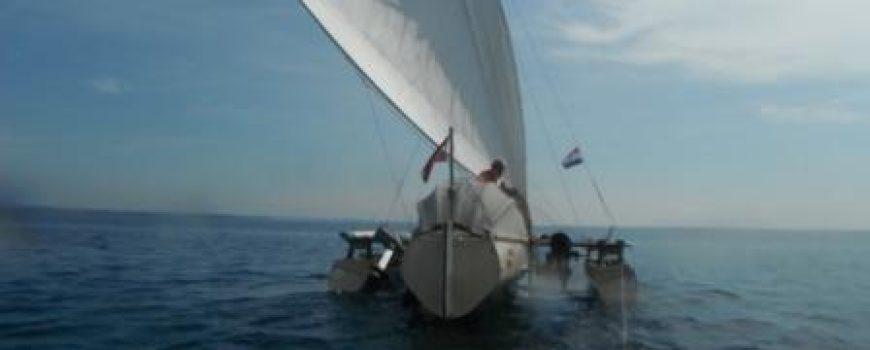 DSCF5042r Trimaran unter Segel am Wasser