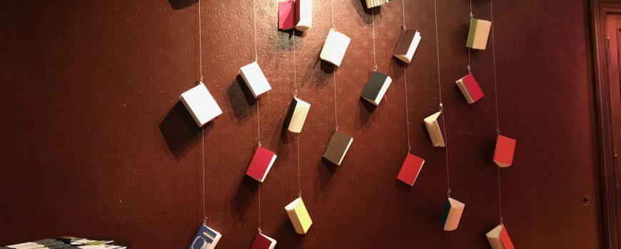 IMG_0241 Bücher, hängend