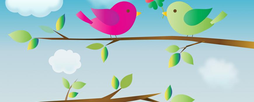 birds-with-heart-4257033_1280