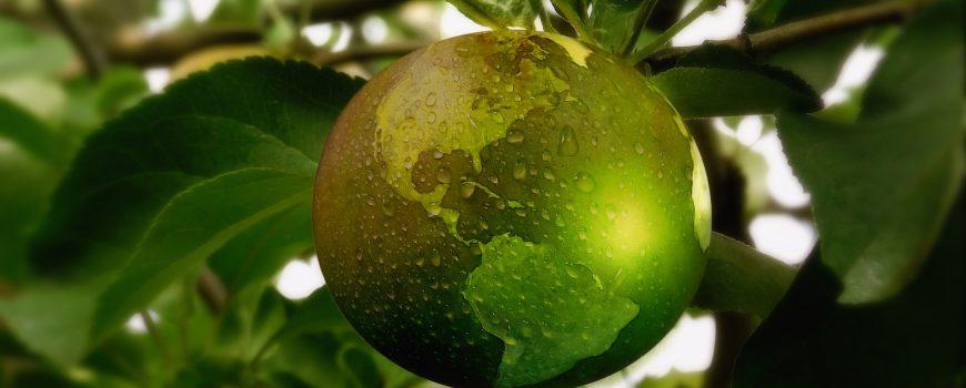 Bild von Gerd Altmann auf pixabay.com Nachhaltigkeit global